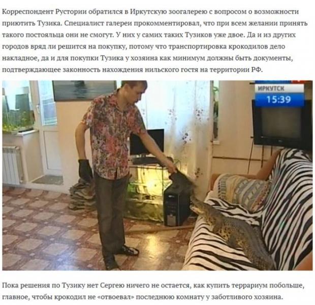 Необычный домашний питомец захватил квартиру